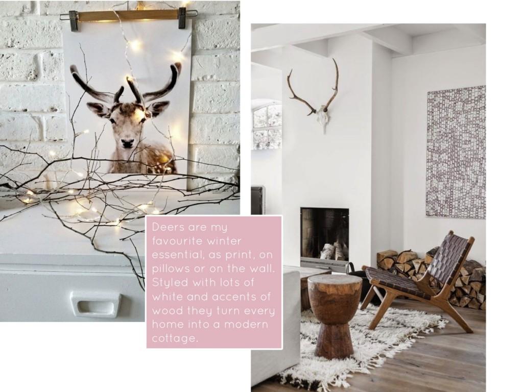 cozy cottage4